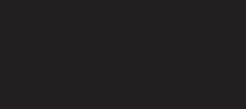 RadicalReelsTour-logo-225x100.png